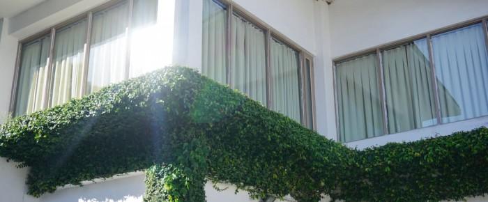 Hausmittel oder gekaufte mittel für das Fensterputzen?