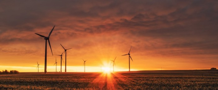 Sind Windenergieanlagen wirklich umweltfreundlich?